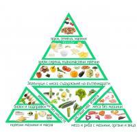 ketogenno hranene